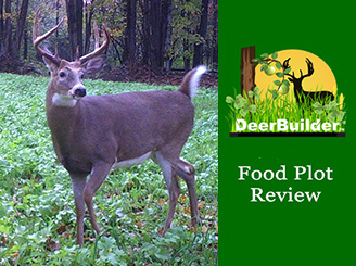 Annual Food Plot Seed Review - DeerBuilder.com