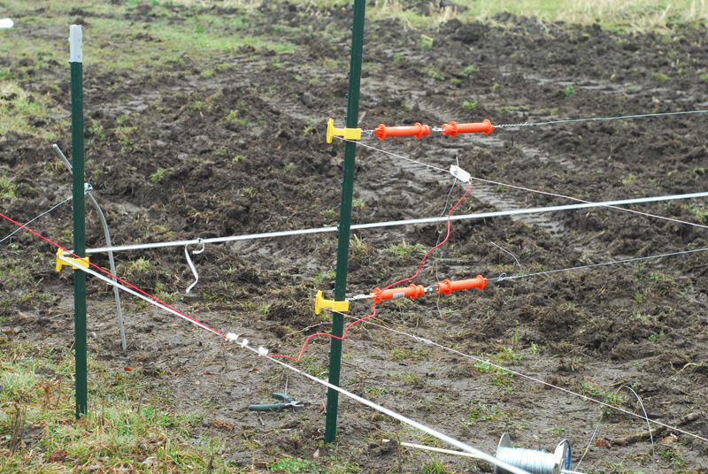 How To Protect Your Food Plots With An Electric Fence