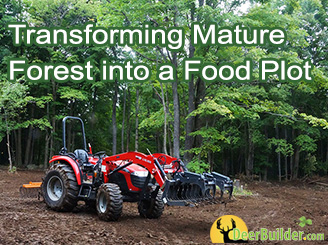 Forest to Food Plot in 5 Steps