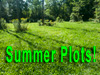 Why you need Spring/Summer Plots
